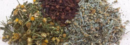"""Russische """"Dreierlei"""" von Dr. Ivchenko – Rezept gegen Parasiten und Pilzen"""